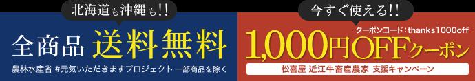 全商品送料無料 今すぐ使える1,000円OFFクーポン