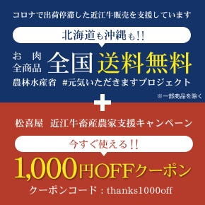 送料無料+クーポン